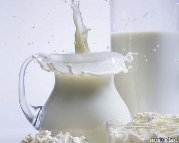 Бизнес-идея: производство по переработке молока – это выгодно