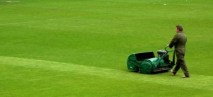 Lawn-mower-intro-page-pic