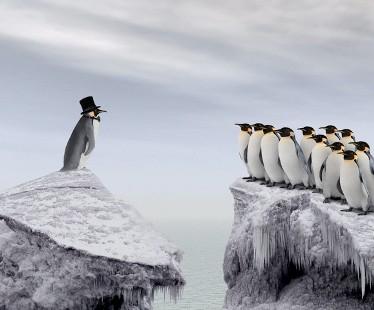 Лидерские качества тренируются или как стать настоящим лидером