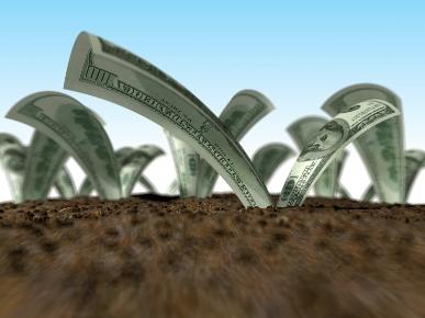 Бизнес идея: 4 направления инвестиций в земельные участки для максимальной прибыли