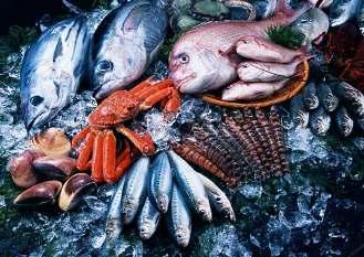 Идеи для бизнеса: Открываем доходный магазин рыбы