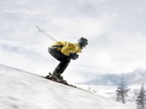 Бизнес идея: эксплуатация горнолыжного спуска или лыжной базы