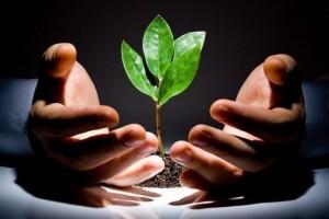 Инвестиции в малый бизнес — личная версия