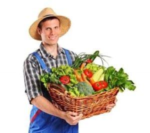 Как открыть фермерское хозяйство, как начать этот бизнес с нуля?