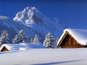 Зеленый туризм зимой – отличная бизнес-идея