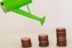 Кредит на старт-ап: как его получить