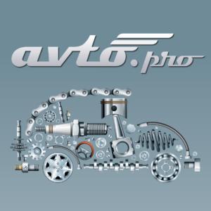 Как установить взаимовыгодное сотрудничество? Нетворкинг на «Avto.Pro Инновации 2018»